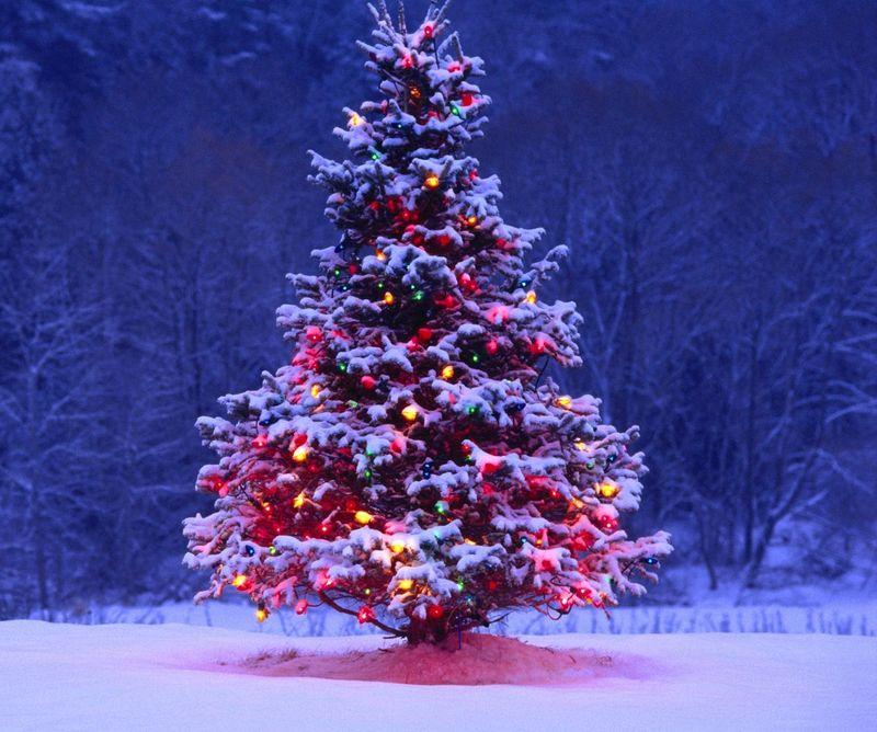Бесплатная Новогодняя Елка